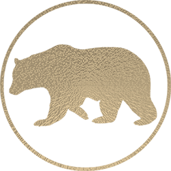 Large bear logo gold effect screen jg05.2015