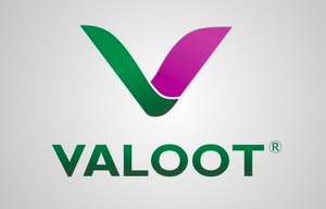 Valoot Technologies Limited