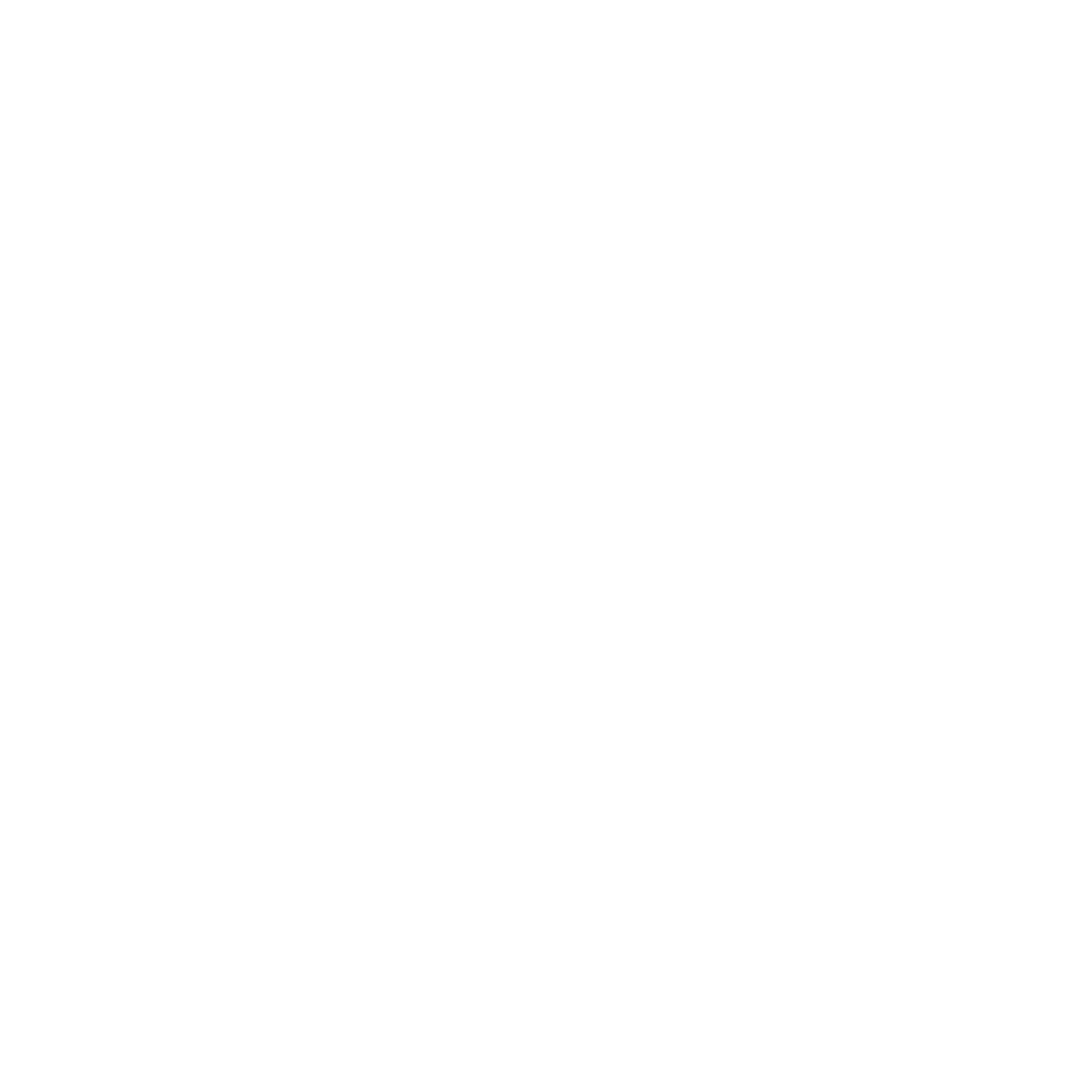 Electric Soul Limited