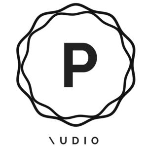 Preter Audio Pty Ltd