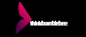 ThinkBumblebee Analytics