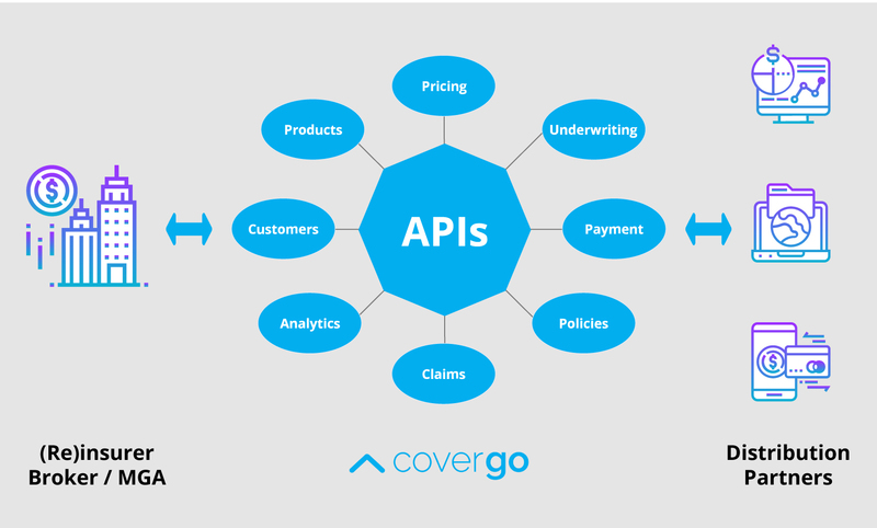 Graphic showing insurers  api and partners